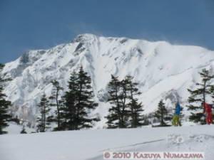 Mar14_TsugaikeKogen_HakubaArea177RC
