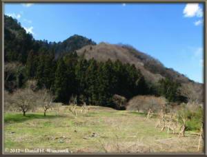 Mar25_05_HikageCk_SceneryRC