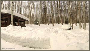 Mar04_1_2_3_SphPano_SnowDepth_OurPropertyRC