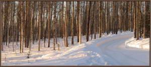 Mar16_09_10_11_AutoPano_AtHome_Yard_SnowRC