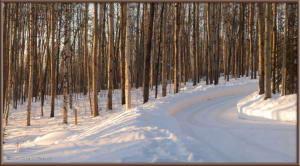 Mar16_10_11_AtHome_Yard_SnowRC