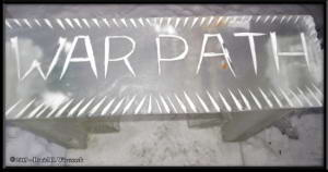 Mar3_35_IceParkRC
