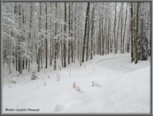 Mar25_07_SnowStormRC
