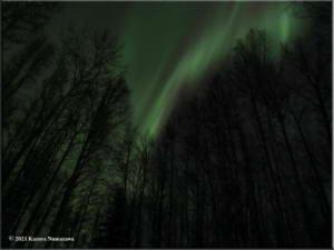 March19th_005_Aurora_CurvesRC