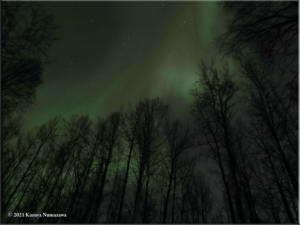 March19th_008_AuroraCurvesRC