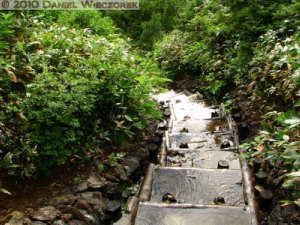 Jul10_035_Oze_MtShibutsu_WateryTrailRC