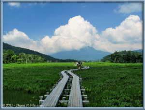 July15_055_OzeNP_Mt_HiuchigatakeRC