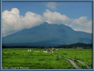 July15_151_OzeNP_Mt_HiuchigatakeRC