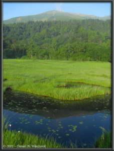 July16_011_OzeNP_MtShibutsu_ReflectionRC