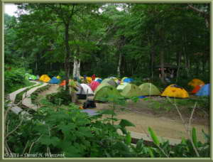 July16_229_OzeNP_CampingPlaceRC