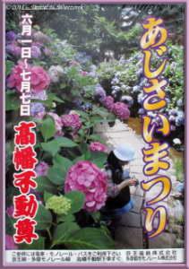 July1_04_Takahatafudo_HydrangeaMatsuriRC