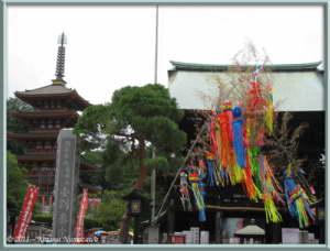 July1st_TakahataFudou003_TanabataRC