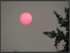 July7_05_GettingersField_SmokySunRC