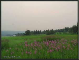 July7_40_GettingersField_SmokySunRC