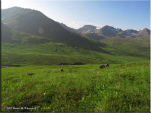 Jul18_052_HatcherPassArea_ClimbToPond_SceneryRC