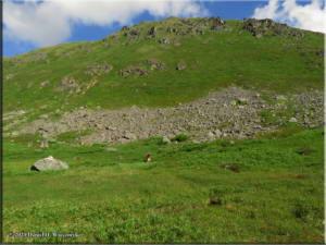 Jul18_089_HatcherPassArea_ClimbToPondRC