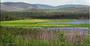 Jul19_046_047_AutoPanoAT_AlaskaHighway_NearMoonLakeRC