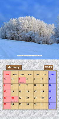 2019 Calendar - Alaska Outdoor Photos - January Page