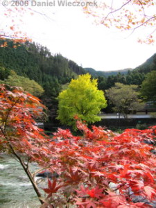 Nov12_TamaRiverMitake21RAWRC.jpg
