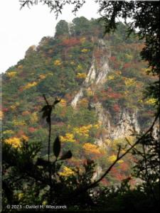 Nov03_KawanoriTrail_FallColor77RC.jpg