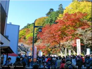 Nov23_TakaoSanGuchiFallColor06RC.jpg