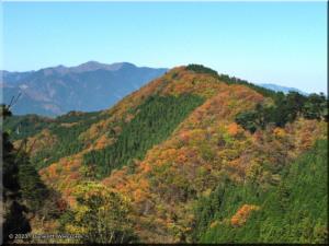 Nov24_MtMitake39_Trail_FallColorRC.jpg