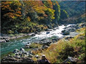 Nov22_Sawai_FallColor77_RaftersRC.jpg