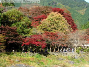 Nov15_Mitake_FallColors02_RC