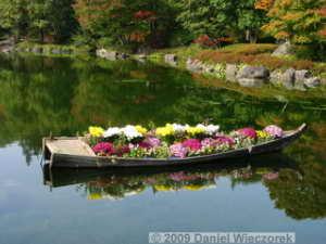 Oct31_ShowaKinenPk089_JapaneseGardenColorsRC