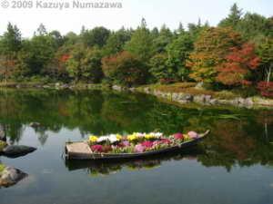 Oct31st_ShowaKinenP067_JapaneseGarden_ColorsRC