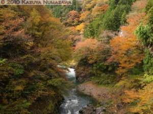 Nov13th_Okutama055RC