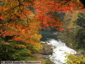 Nov13th_Okutama067RC