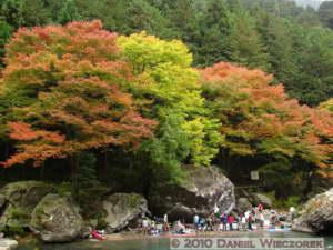 Nov14_272_Sawai_TamaRiverFallColorsRC