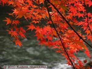 Nov14th_Mitake077RC