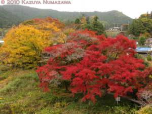 Nov14th_Mitake116RC