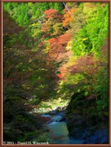 Nov12_066_067_068_TMTC_OkutamaMukashiMichiHikeRC
