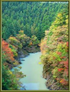 Nov12_080_081_082_Fused_OkutamaMukashiMichiHikeRC