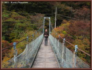 Nov12th_Okutama041_FallColorsRC