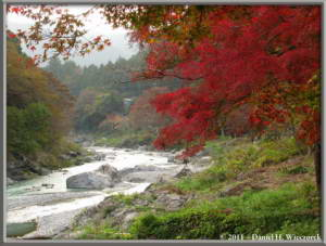 Nov18_166_TamaRiver_Mitake_Sawai_FallColor_RC