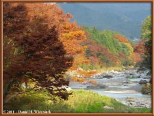 Nov18_186_TamaRiver_Mitake_Sawai_FallColor_RC