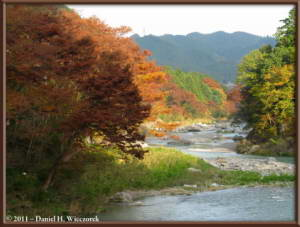 Nov18_189_TamaRiver_Mitake_Sawai_FallColor_RC