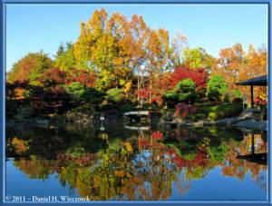 Nov25_108_HigashiFuchuFallColorsRC