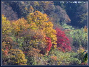 Nov26_059_Nagatoro_IwadatamiRC