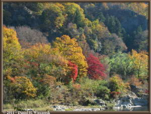 Nov26_071_Nagatoro_IwadatamiRC