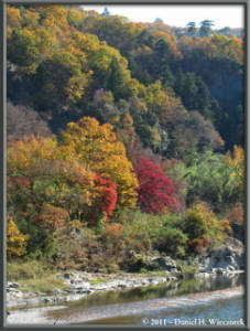 Nov26_072_Nagatoro_IwadatamiRC