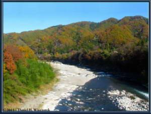 Nov26_157_Wires_Vib_Nagatoro_To_Mitsumine_TrainRC