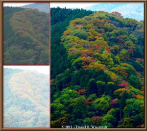 Nov5_102_103_MtMitake_FallColors_AcrossValley_TMTC_OriginalsRC