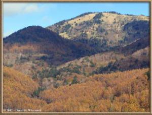 Nov03_126_Daibosatsurei_FallColorsRC