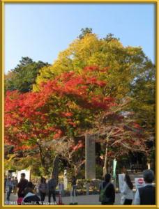 Nov09_01_Takao_Kobotoke_FallColorsRC