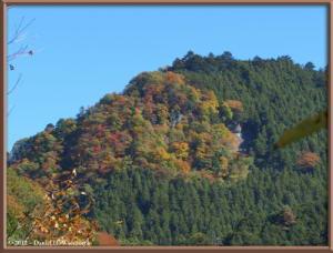 Nov10_158_OkutamaMukashiMichiFallColorsRC
